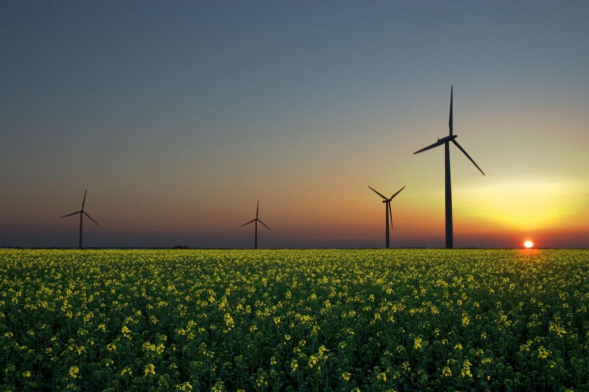 К 2023 году доля возобновляемых источников энергии в мировой электроэнергетике достигнет 30%