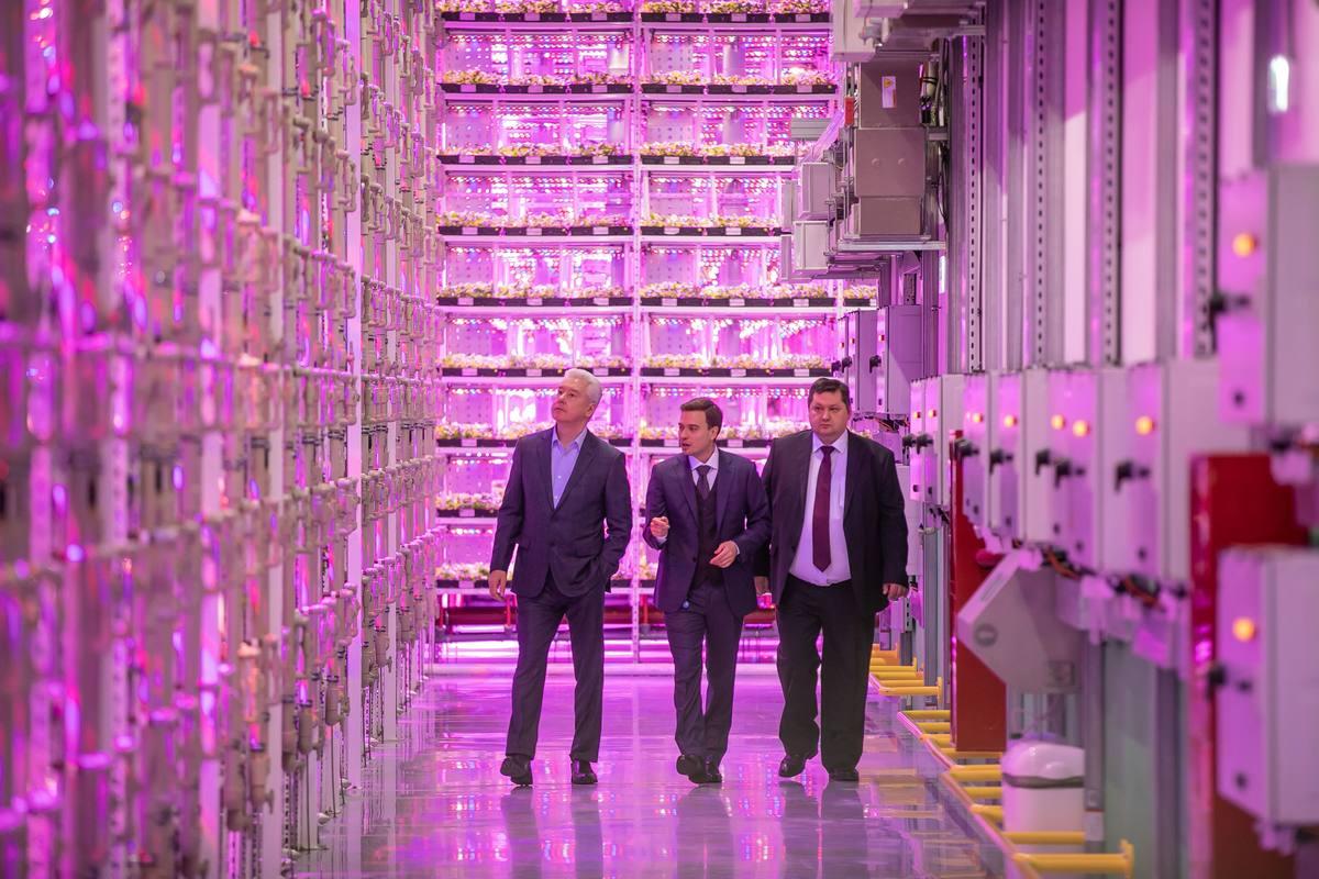 Компания АВВ обеспечила энергоснабжение первой вертикальной сити-фермы в Москве